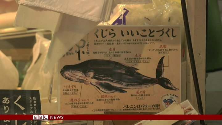 While Japanese Politicians want to resume Whaling, young generation don't want to eat Whale Sushi anymore.