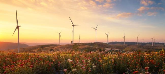 How a not-for-profit charity is helping Apple, Goldman Sachs and others to embrace renewables
