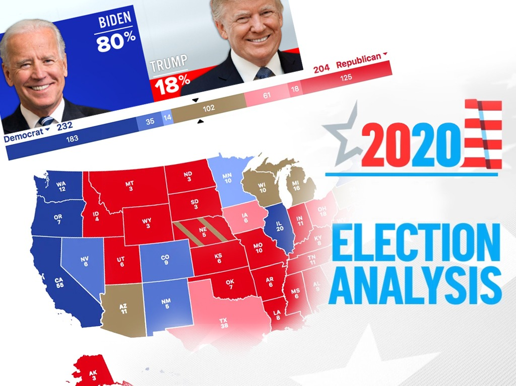 A 2020 Election Analysis